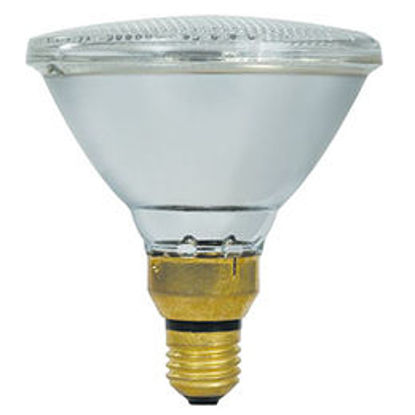 Picture of PAR 38 80W/120W Incandescent Reflector Lamps (Sold 10)